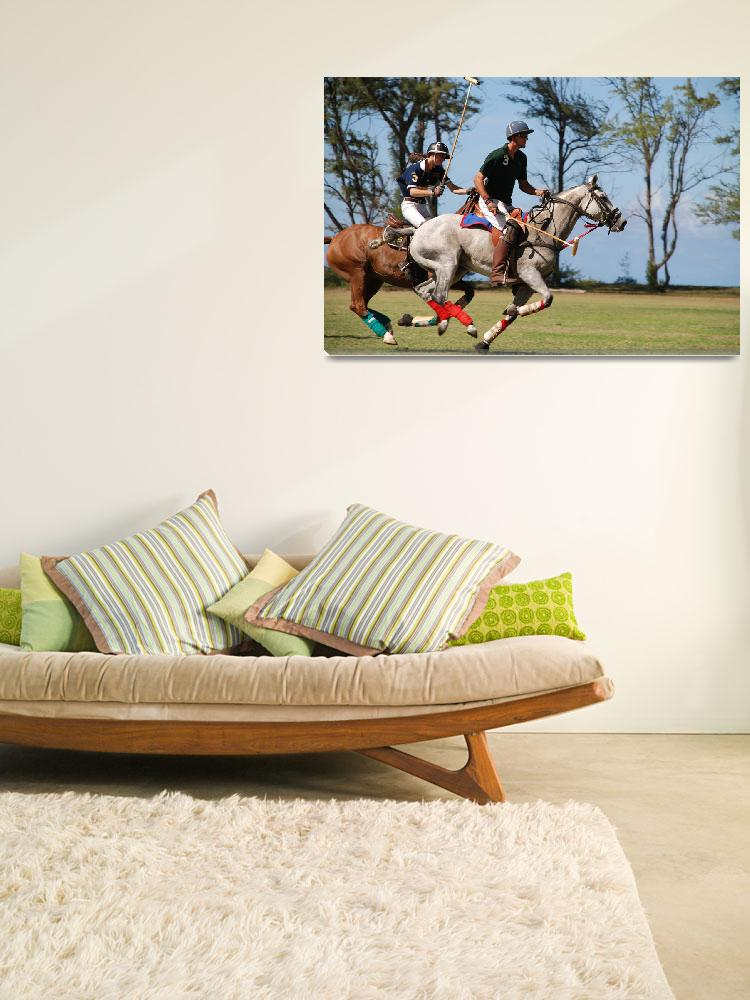 """""""Polo Players""""  by dailyventure"""