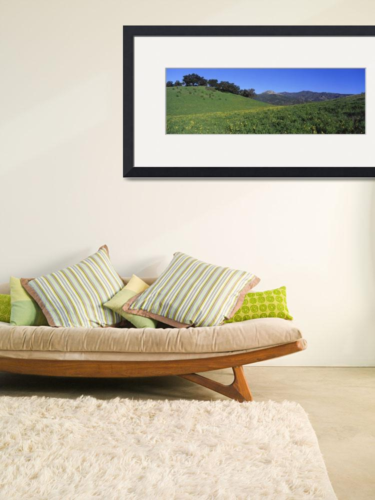 """Hills Ojai CA&quot  by Panoramic_Images"
