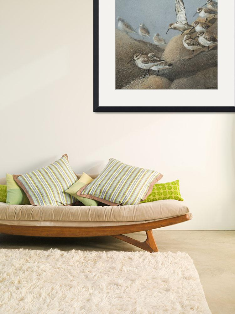 """Resting Sanderlings 2 Painting&quot  (2014) by Ezartesa"