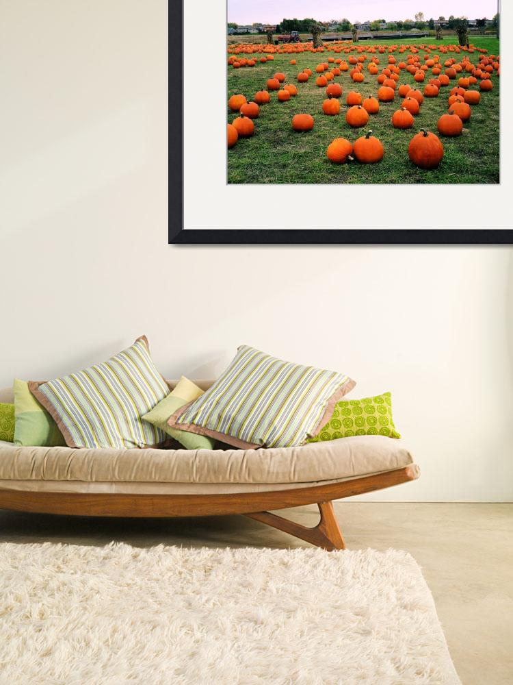 """Pumpkins""  (2009) by eboyce"