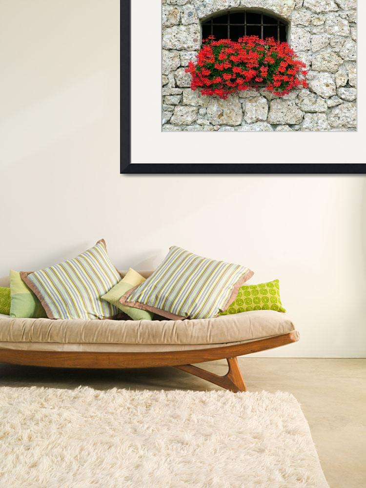 """""""Stone Wall Geraniums&quot  by DonnaCorless"""