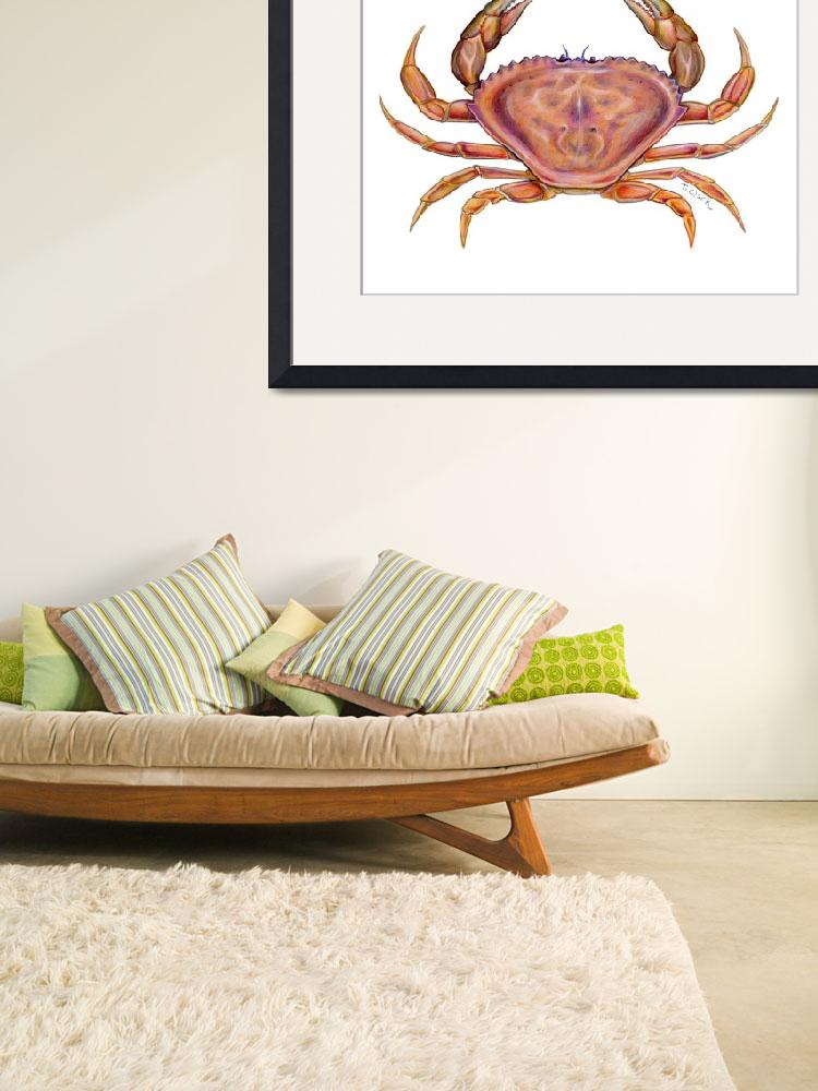 """Dungeness Crab (Cancer magister)""  (2006) by edenart"