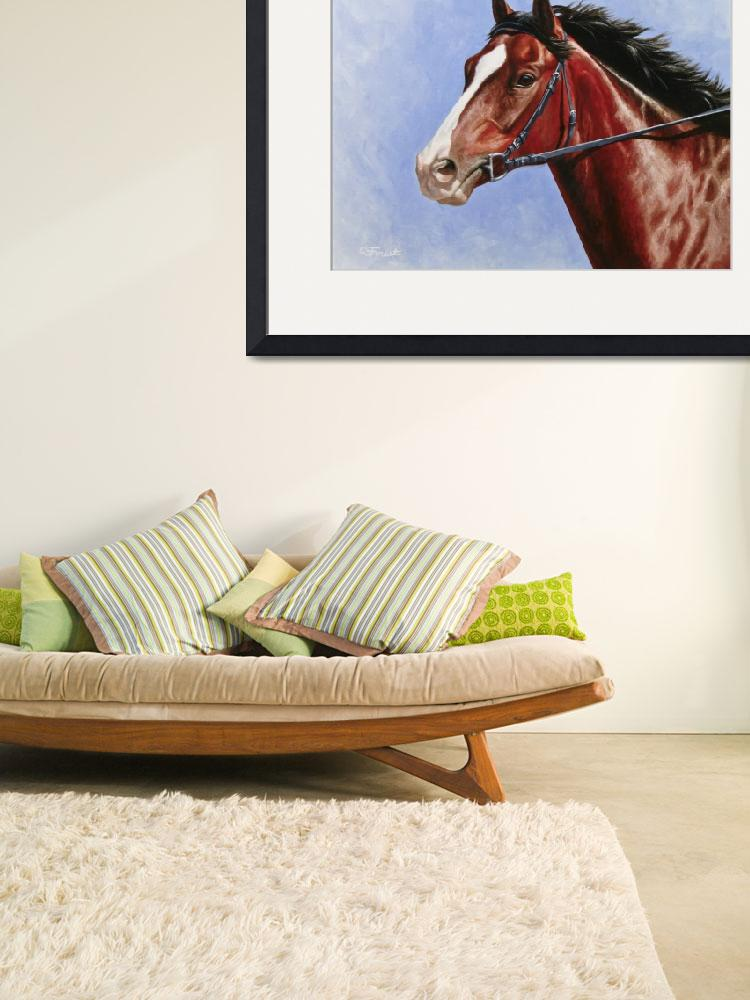 """Bay Thoroughbred Horse&quot  (2014) by csforest"