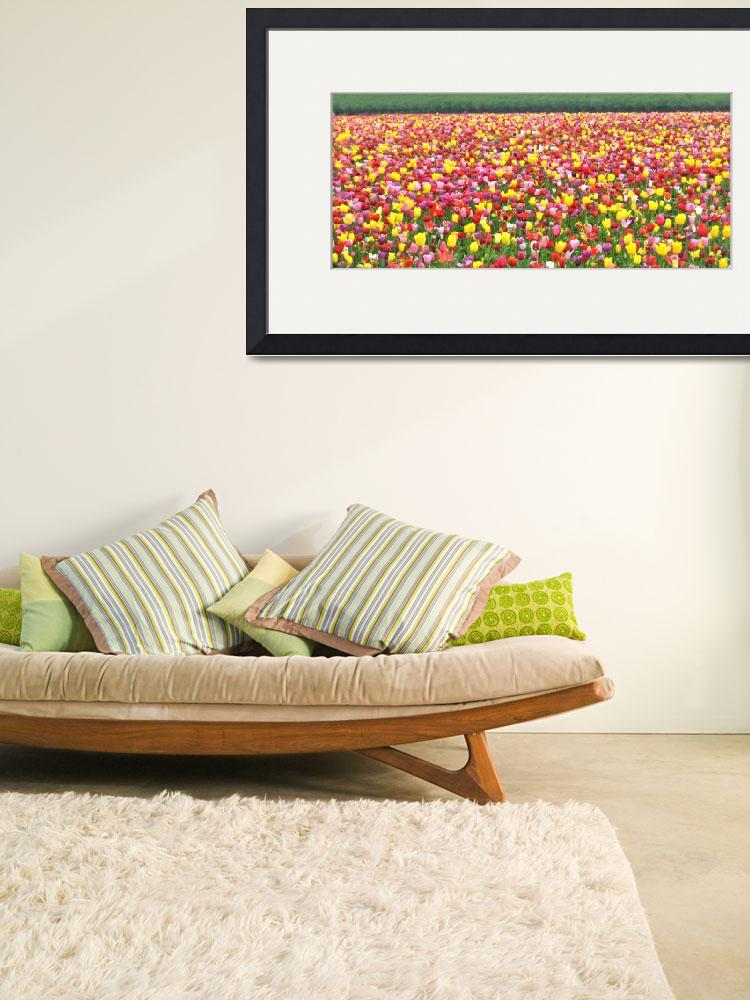 """""""Blanket of tulips&quot  (2010) by Tapestry"""