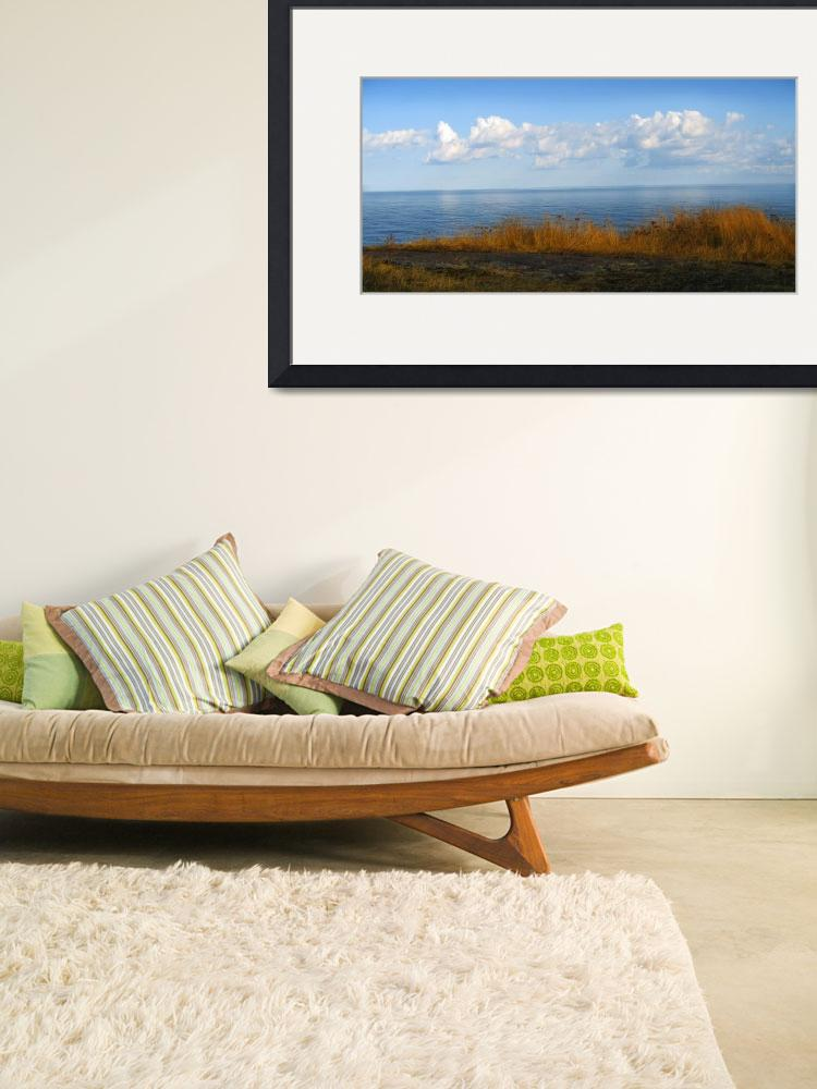 """""""Northshore Grass&quot  (2008) by Esthra"""