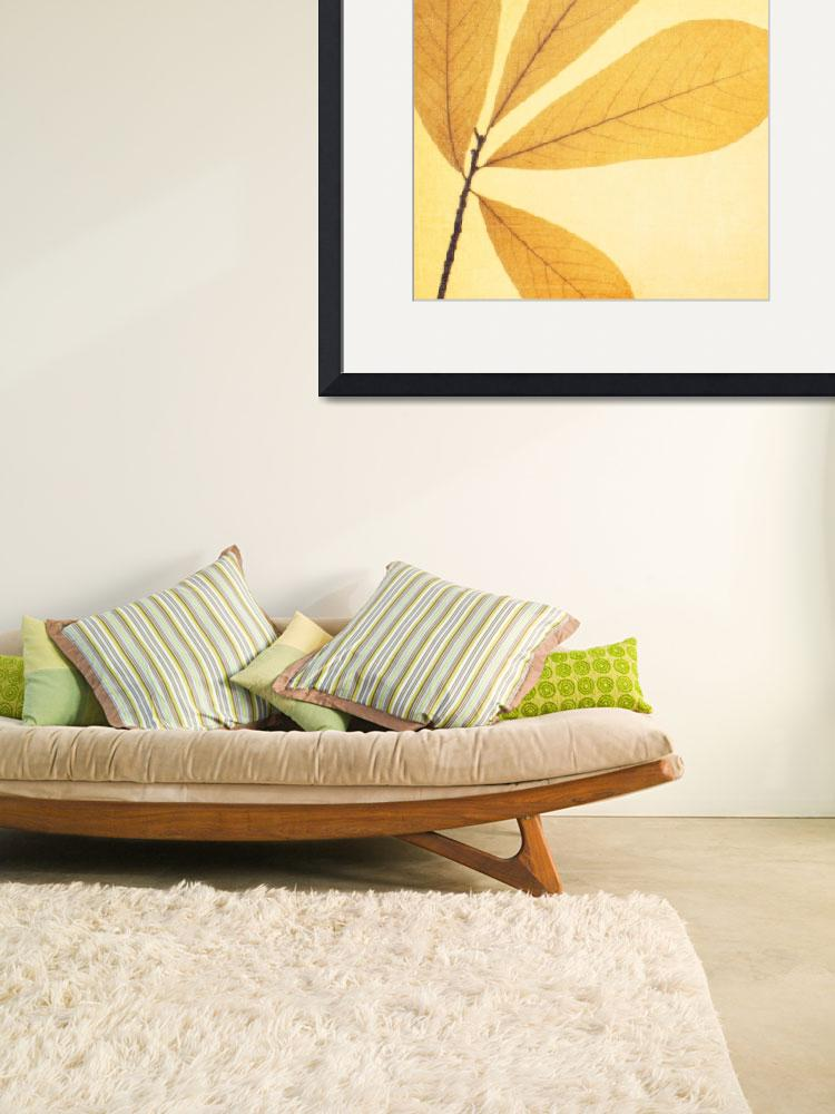"""""""Natural Canvas Botanicals, Yellow&quot  (2011) by GiantPeachDesigns"""