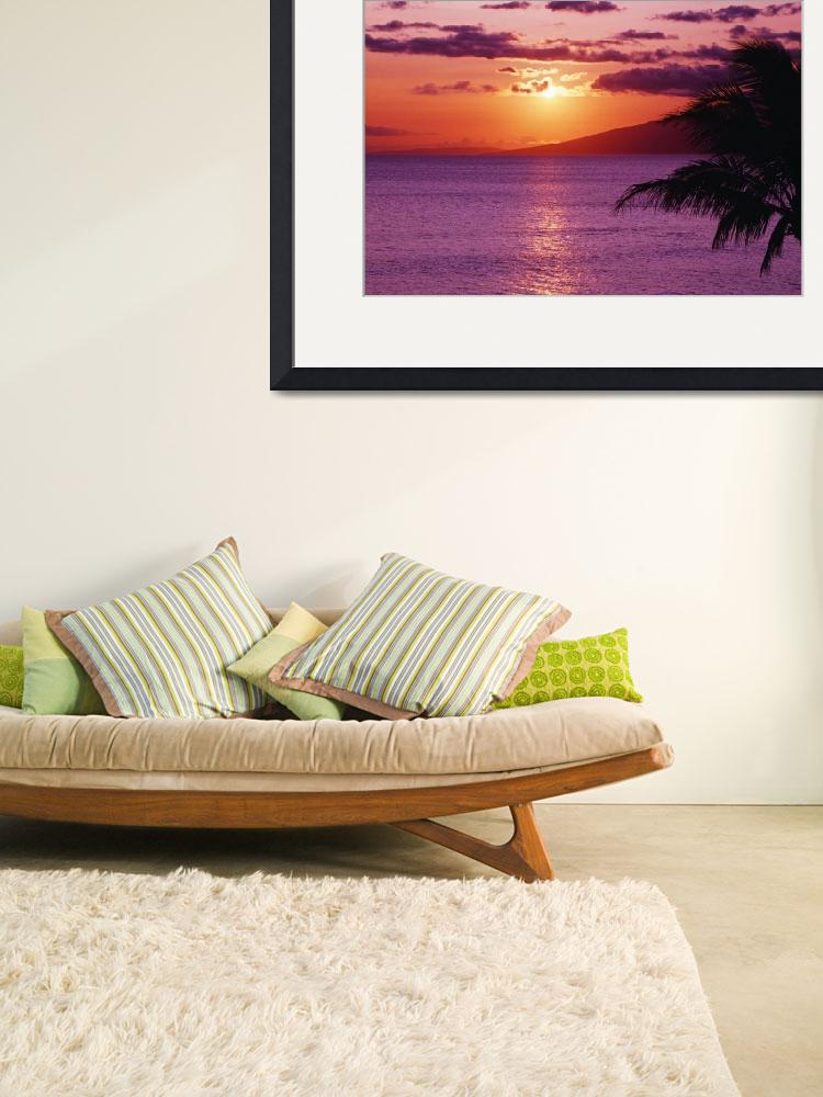 """Hawaii, Maui, Tropical Sunset With Palm Tree&quot  by DesignPics"