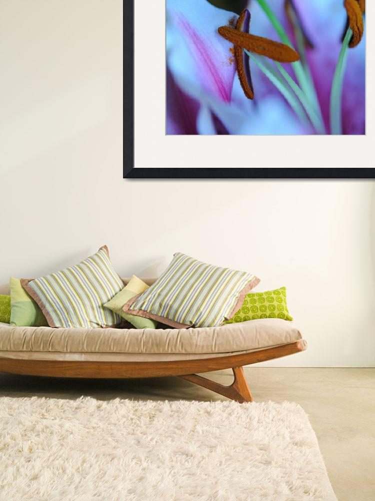 """""""Star Gazer Lily Relaxing 16x20&quot  by bloomingvinedesign"""