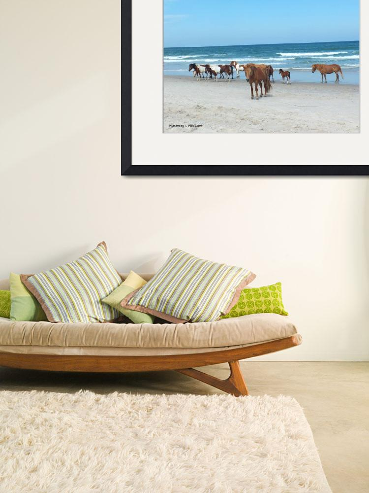 """Assateague Herd 2""  by Kimmary"