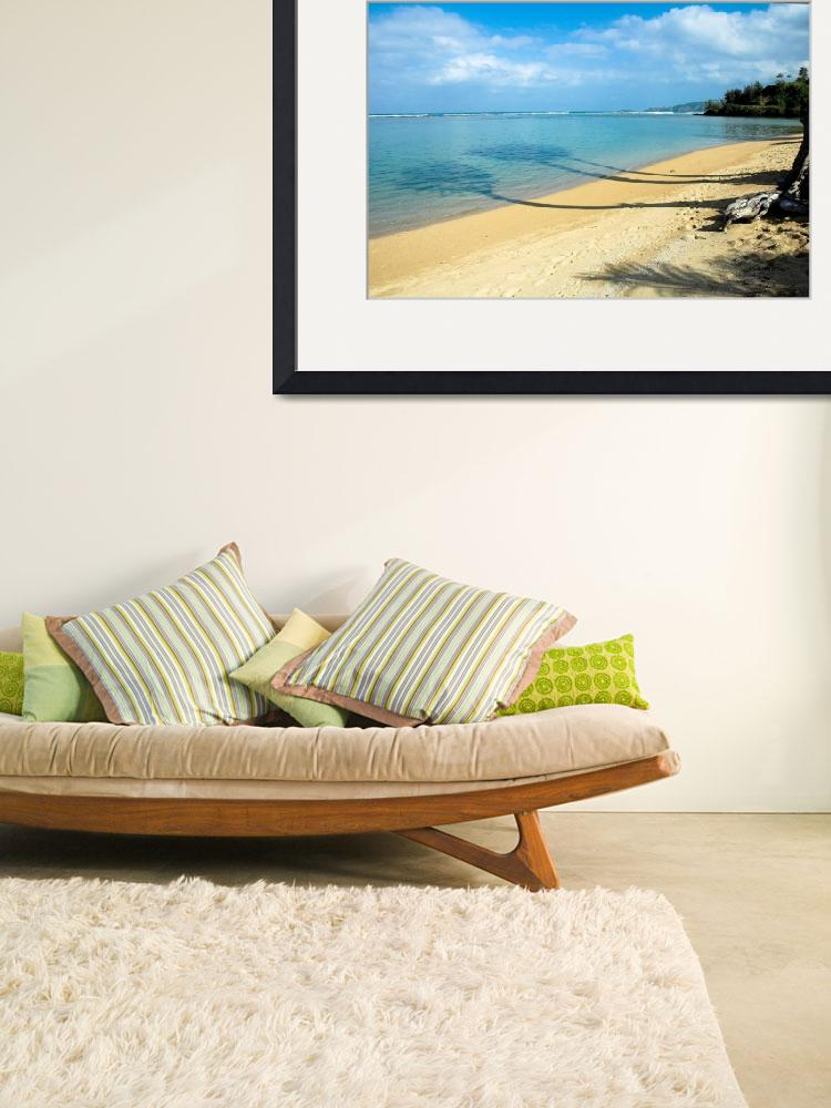 """""""Shade of Palm Tree at the beach&quot  by canbalci"""
