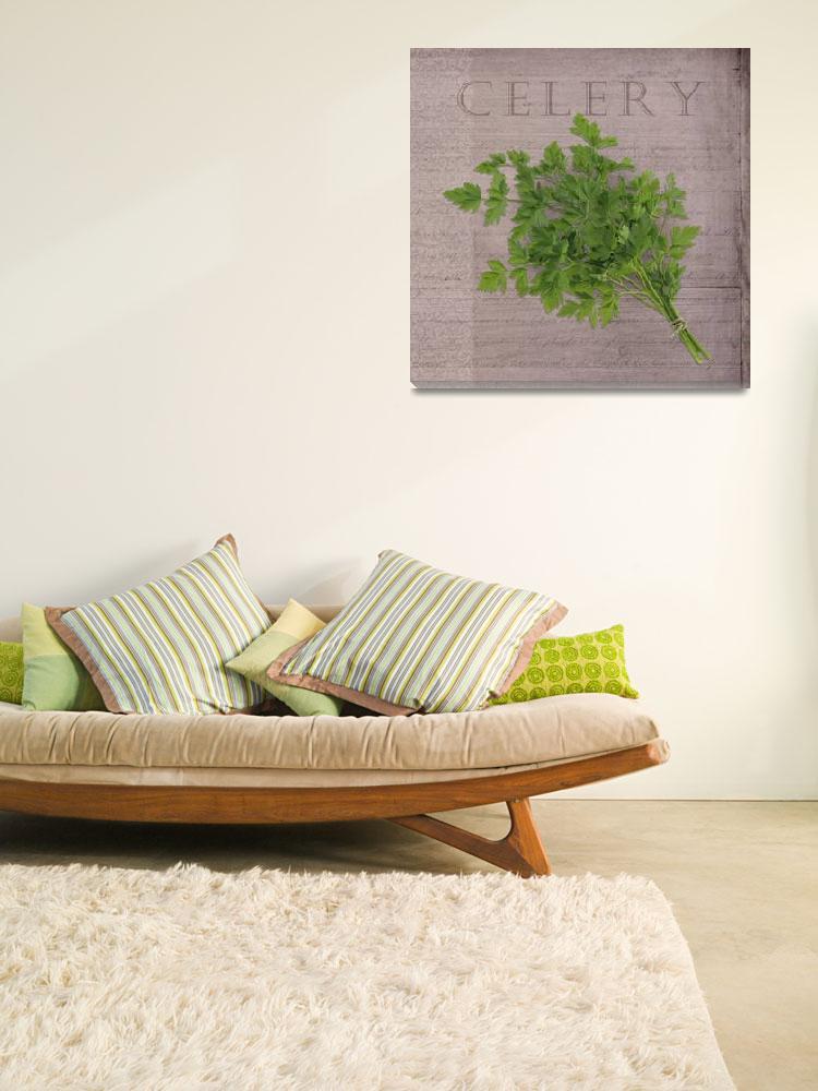 """Classic herbs series: Celery""  (2012) by CoraNiele"
