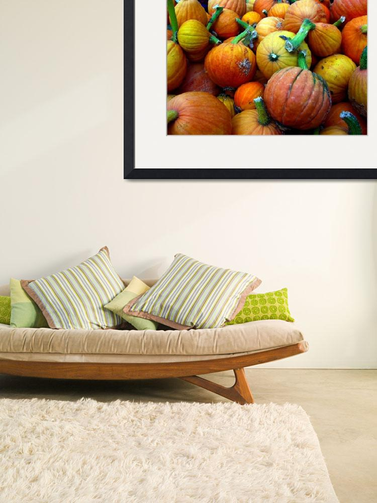 """""""Whidbey Pumpkins Three""""  (2008) by gopnw"""