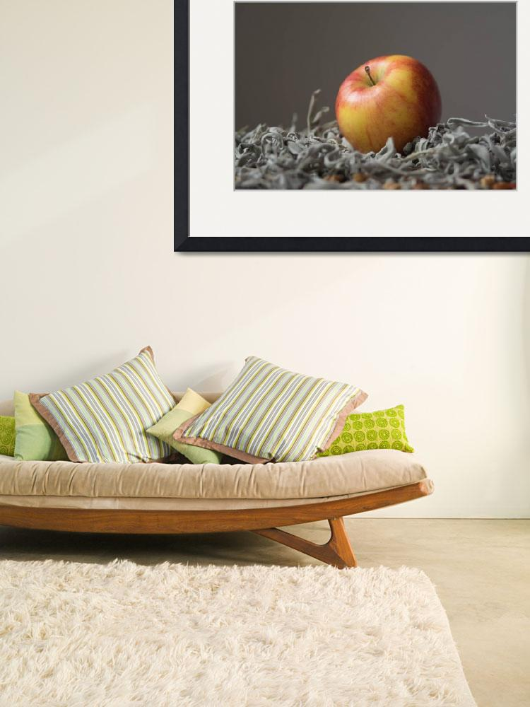 """""""Apple on a bed of herbs&quot  (2014) by bezdan"""