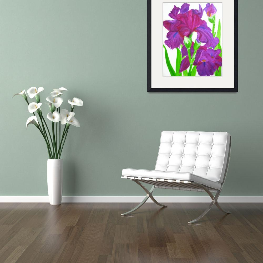"""Irises-vanishing beauty""  (2009) by elajanus"