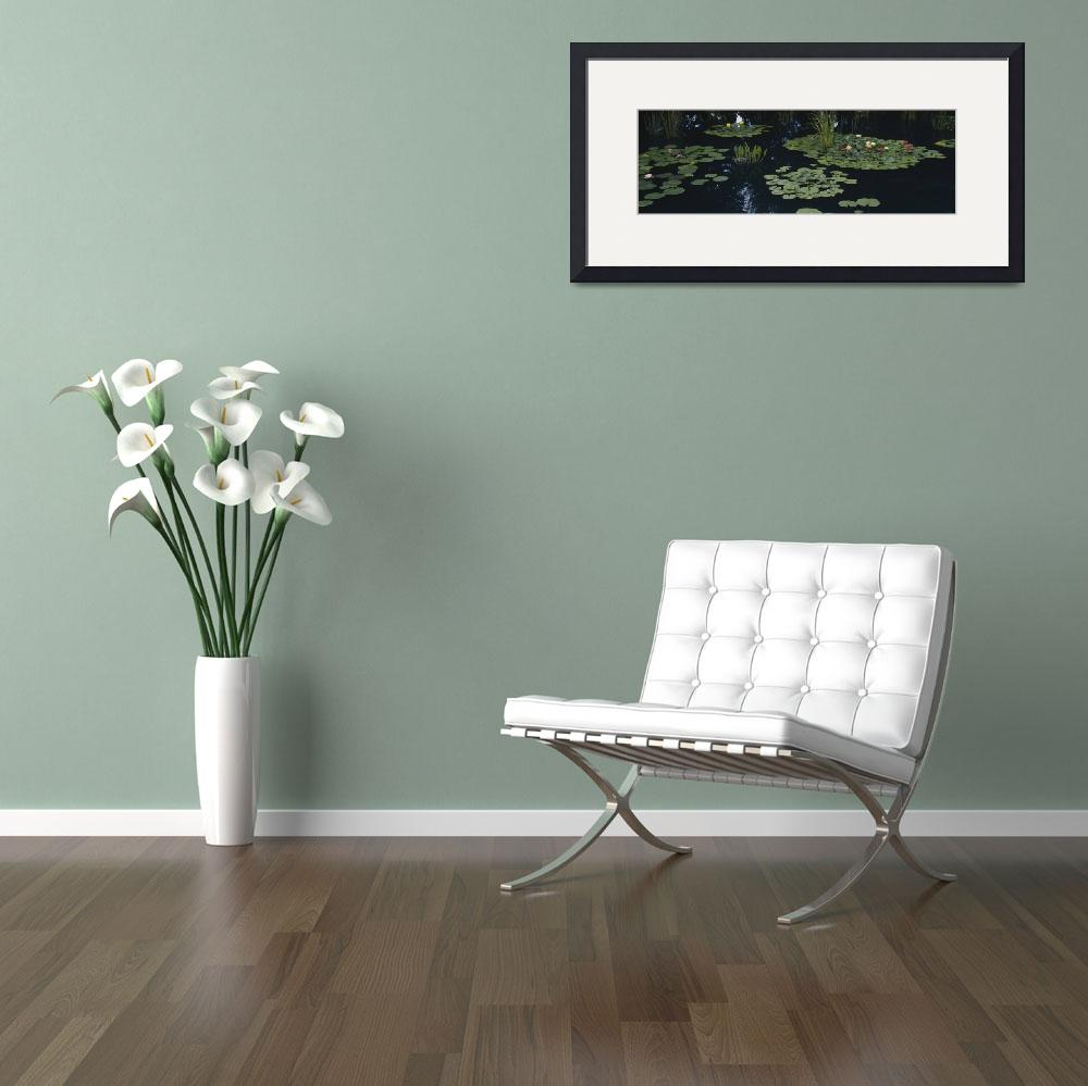 """Water lilies in a pond&quot  by Panoramic_Images"