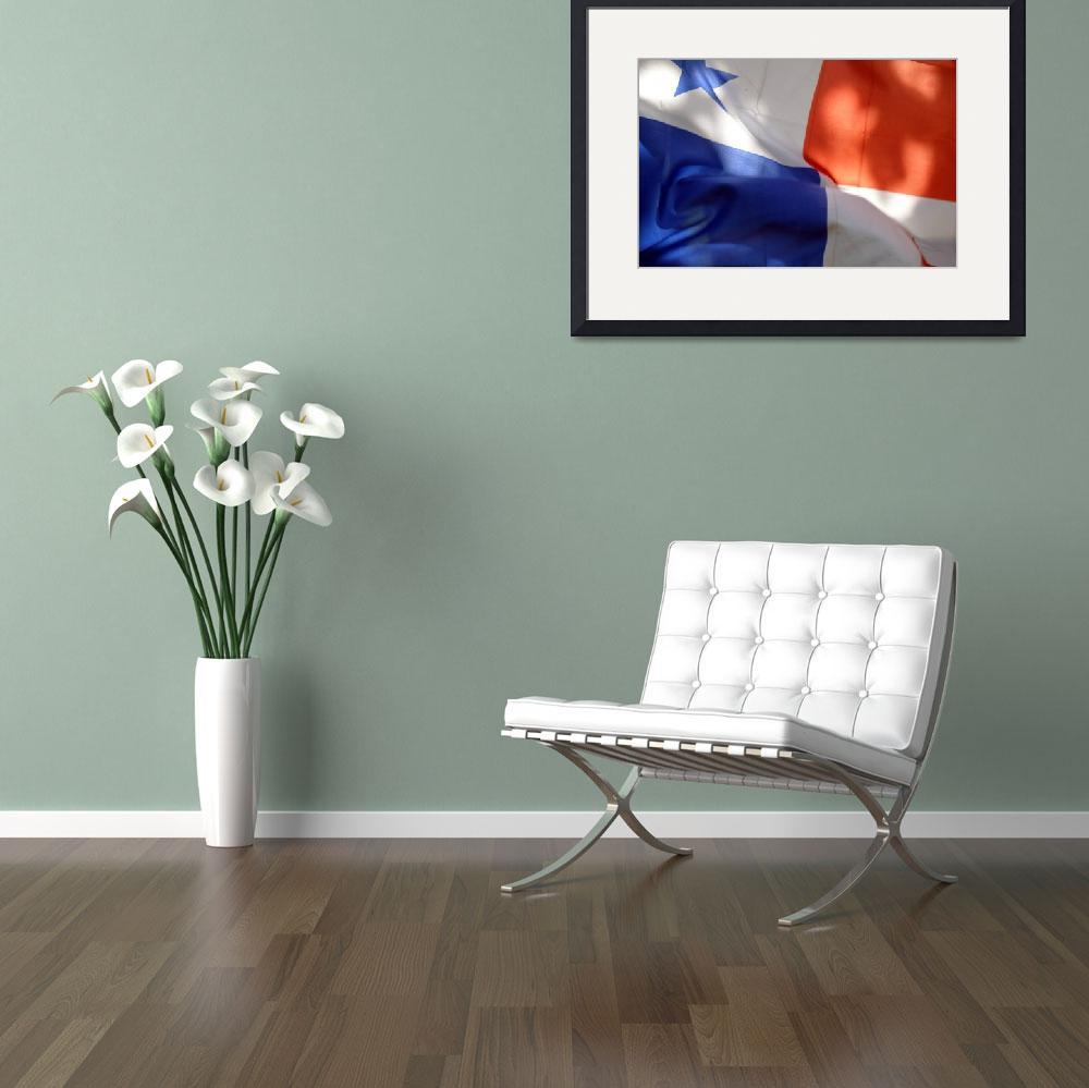 """""""122_panamanian_flag""""  by SouthBoundHound"""