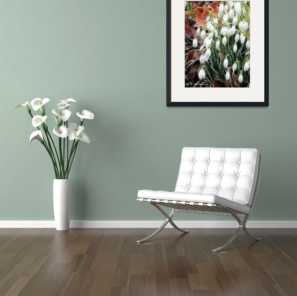 """""""Snow Drops""""  (2009) by rosemariesw"""