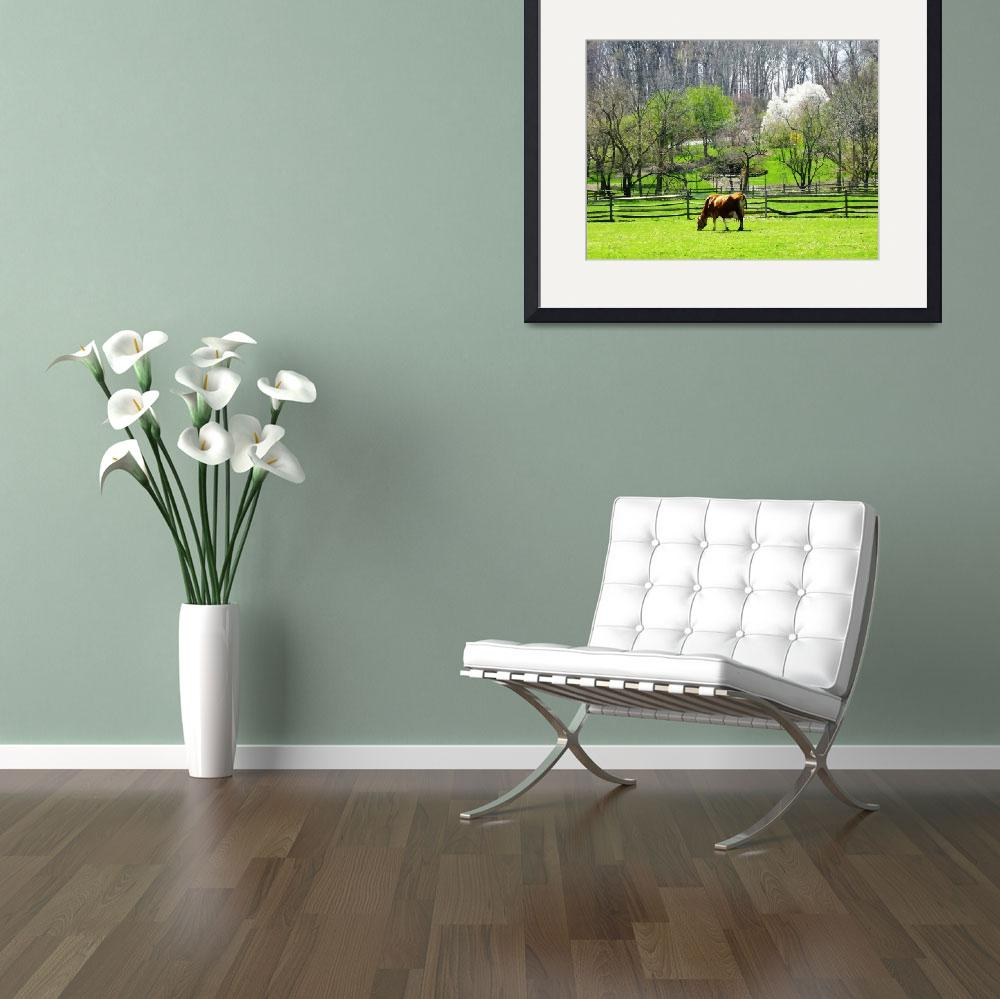 """Cow Grazing in Pasture in Spring""  by susansartgallery"