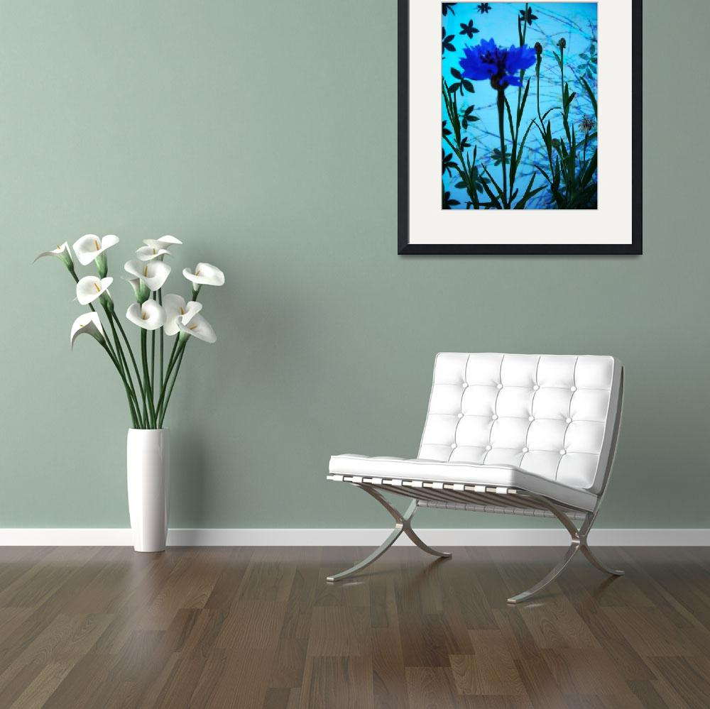 """""""Blue Flower&quot  (2008) by MarkCharlesRooney"""