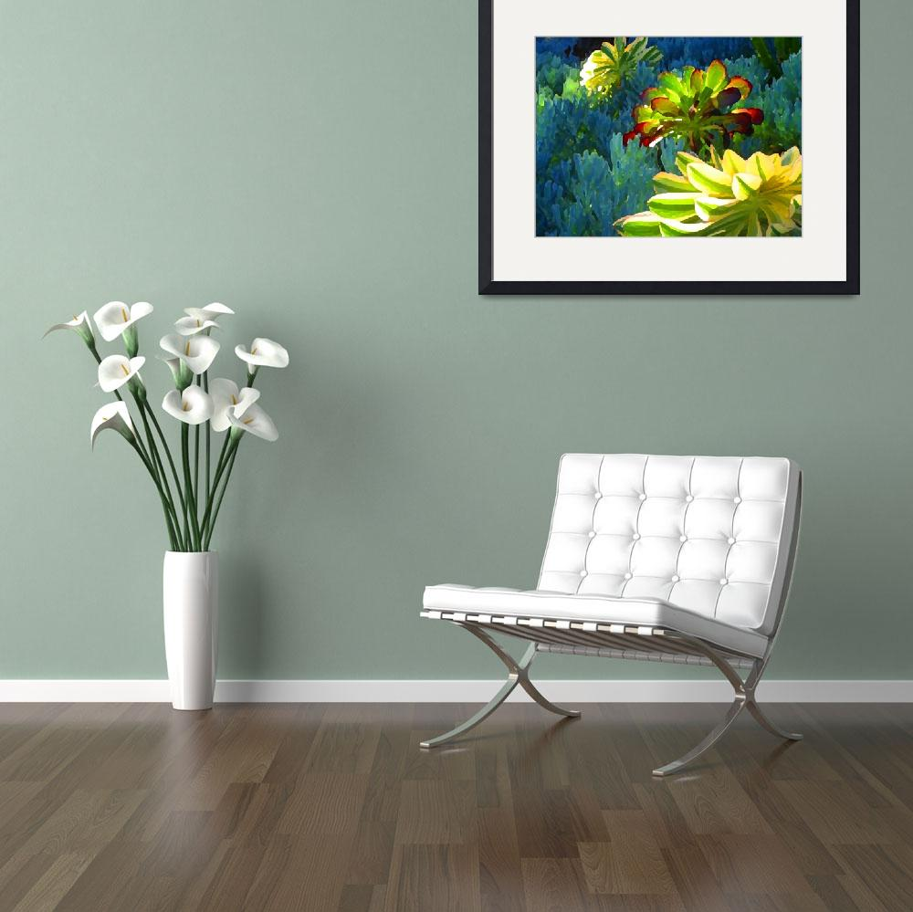 """""""Succulents Backlit on Blue 2&quot  (2009) by AmyVangsgard"""