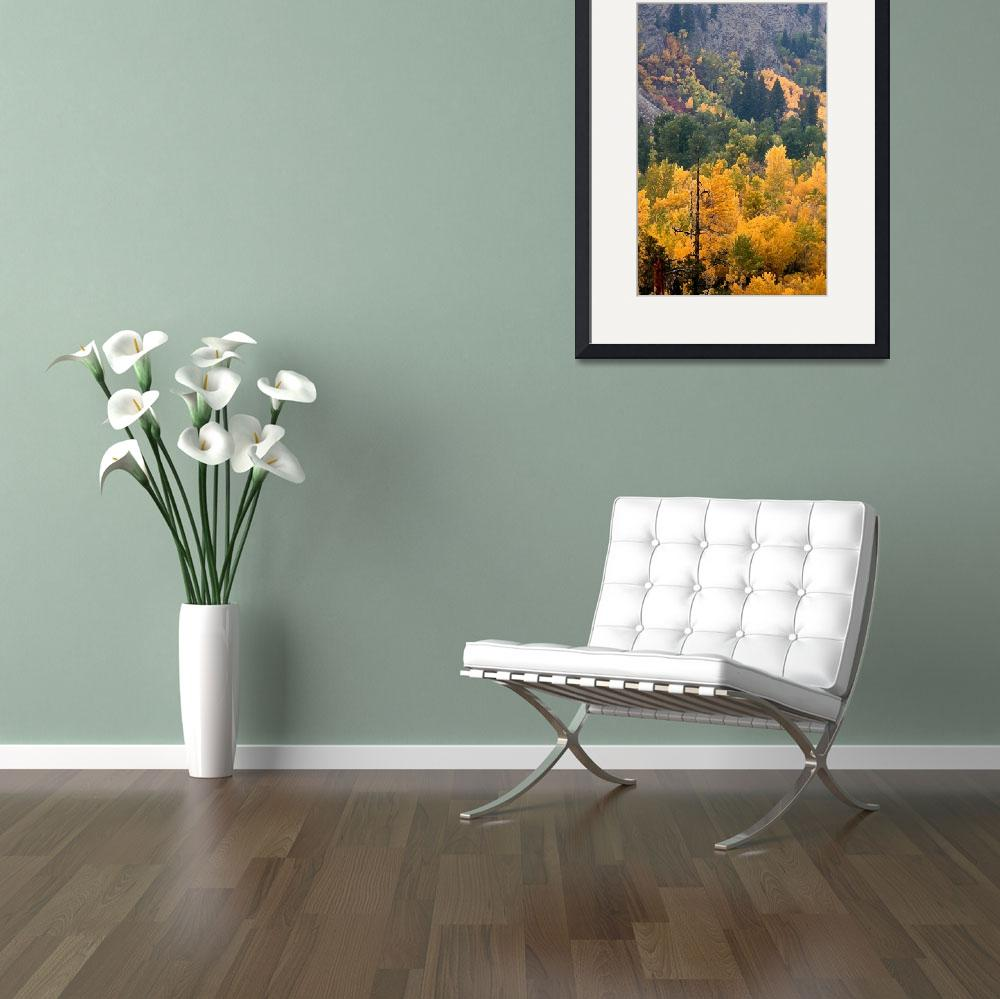 """""""ID SawtoothNRA TrailCrk fall colors 7858 drybrush&quot  (2004) by eye4nature"""