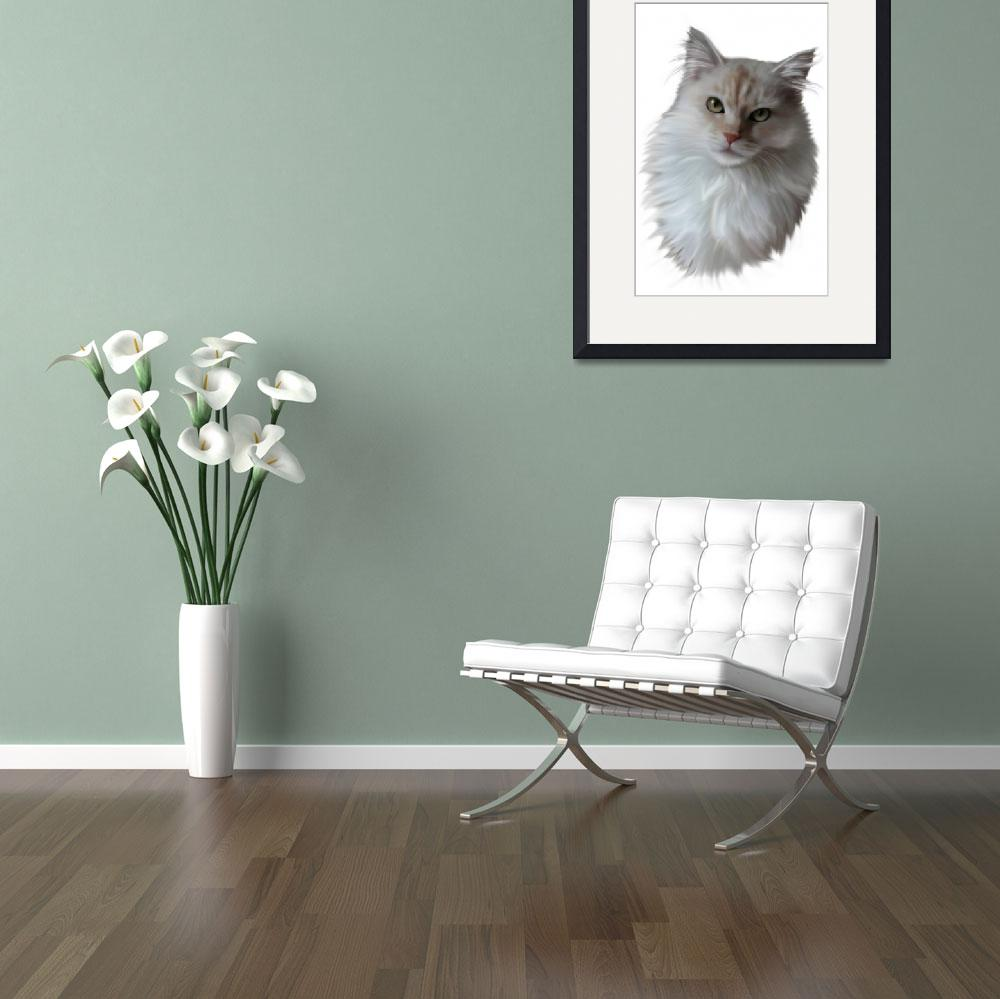 """""""Cream Maine Coon Cat&quot  by mainecooncats"""
