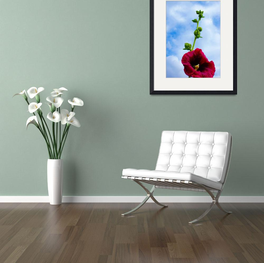 """""""Flower reaching the sky""""  (2009) by andrius"""