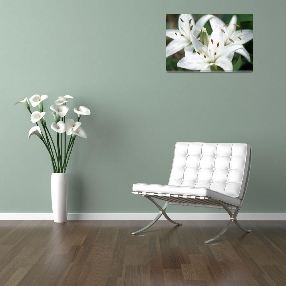 """""""Trio Of Lillies""""  by mrsmade"""