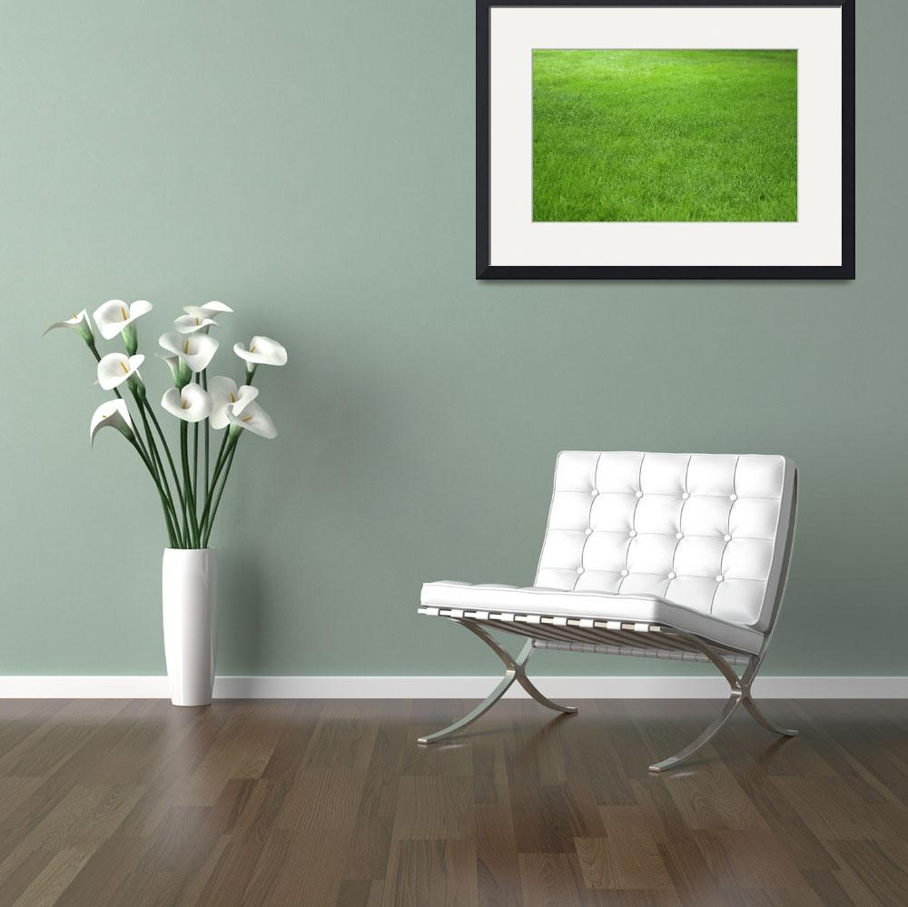 """Just Green Grass&quot  (2008) by Raphael"
