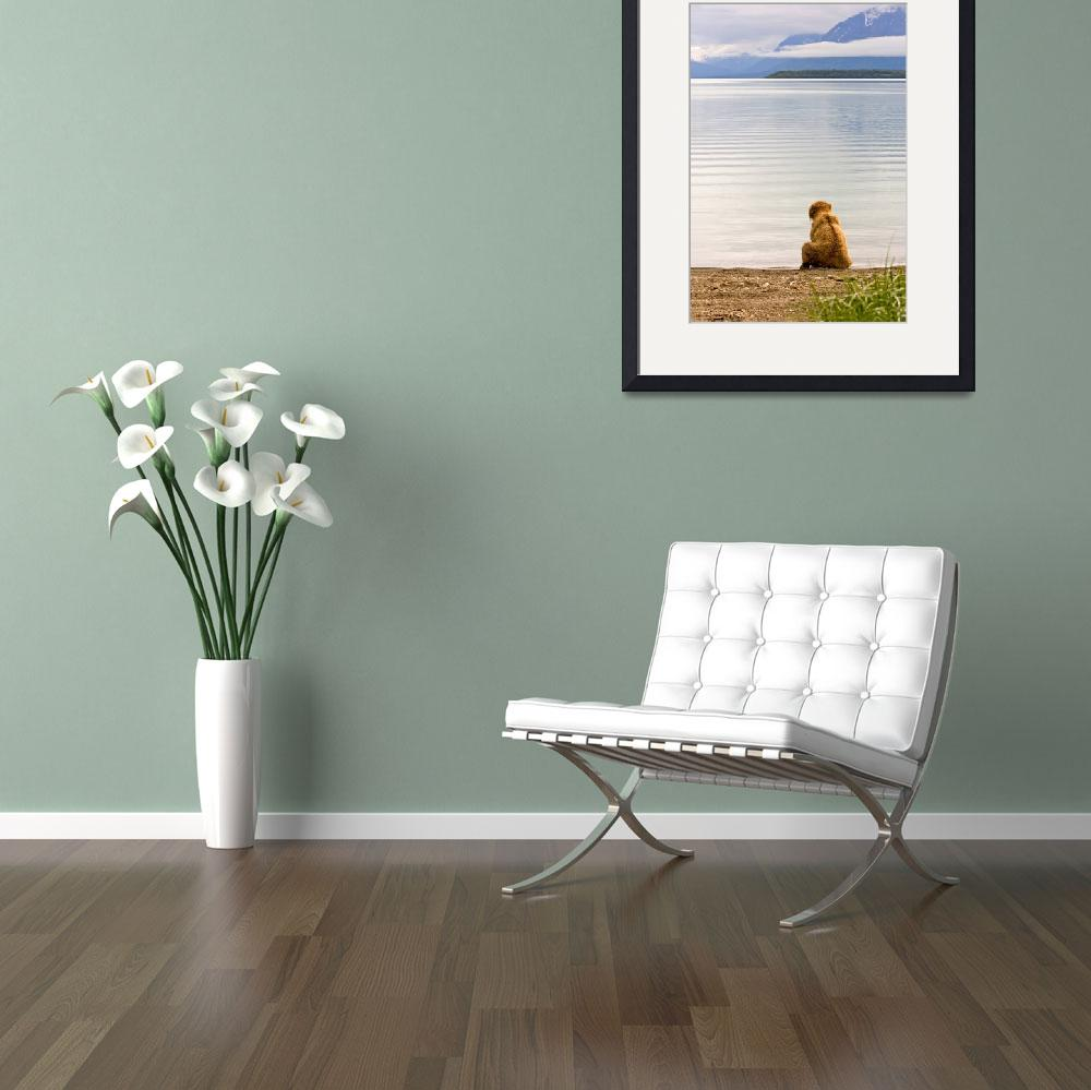 """""""Waiting Patiently""""  (2007) by natureshots"""