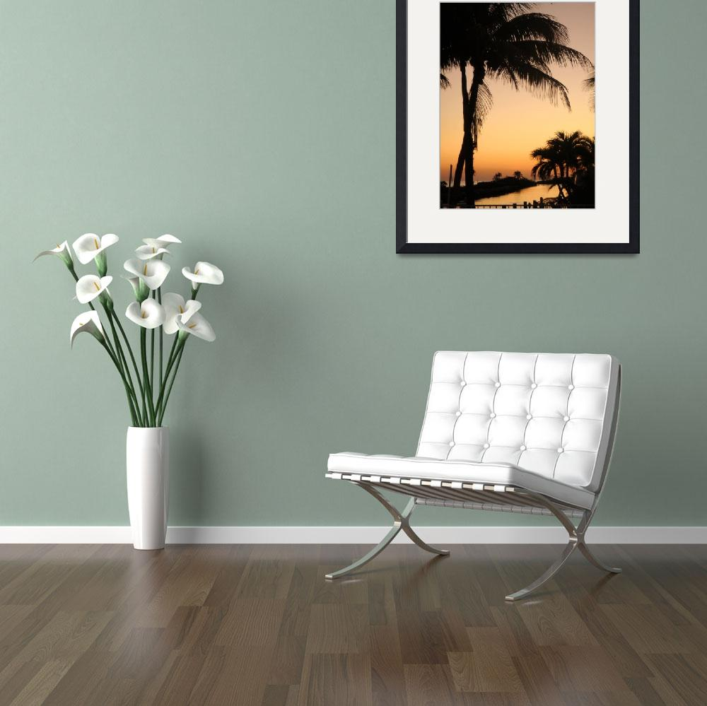"""""""sunny palm&quot  (2008) by mindycokerblack"""