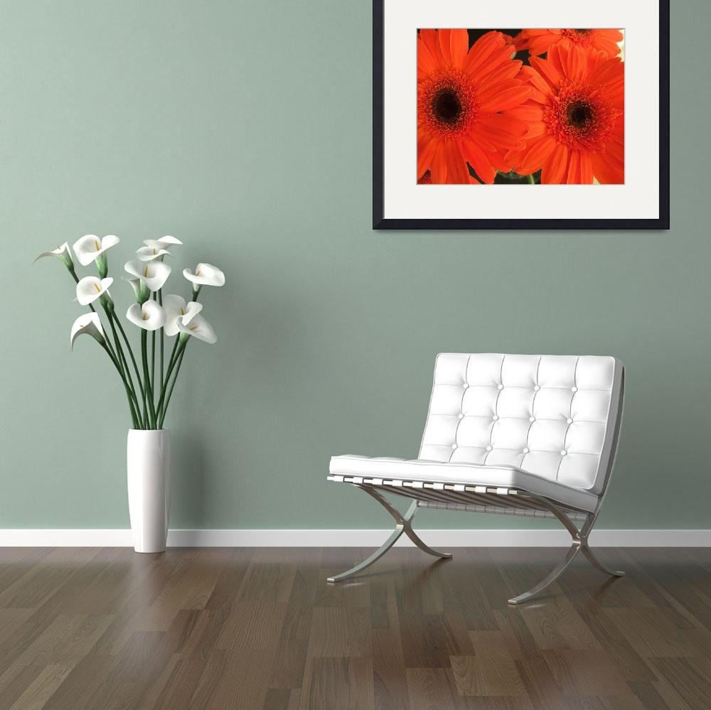 """""""orange daisies""""  (2008) by LauriesCreations"""