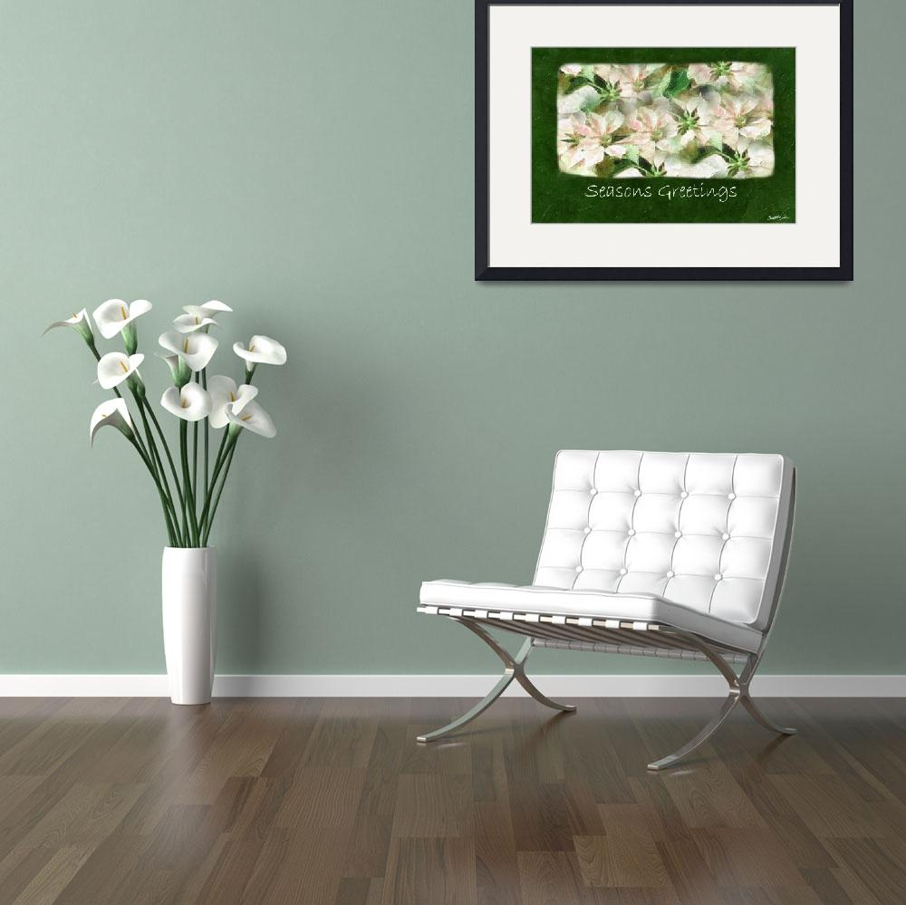 """""""Pink and White Poinsettias 1 Painterly - Seasons G&quot  (2009) by ChristopherInMexico"""