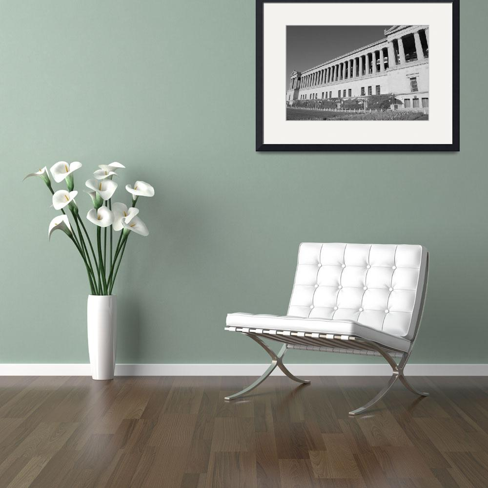 """""""Soldier Field Columns&quot  (2009) by christophertaylorphotography"""