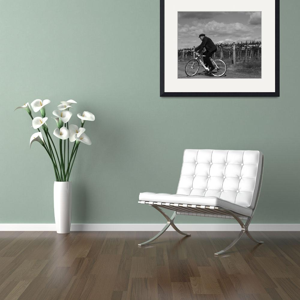 """""""Vineyard Cyclist&quot  (2011) by BohemianEyePhotography"""