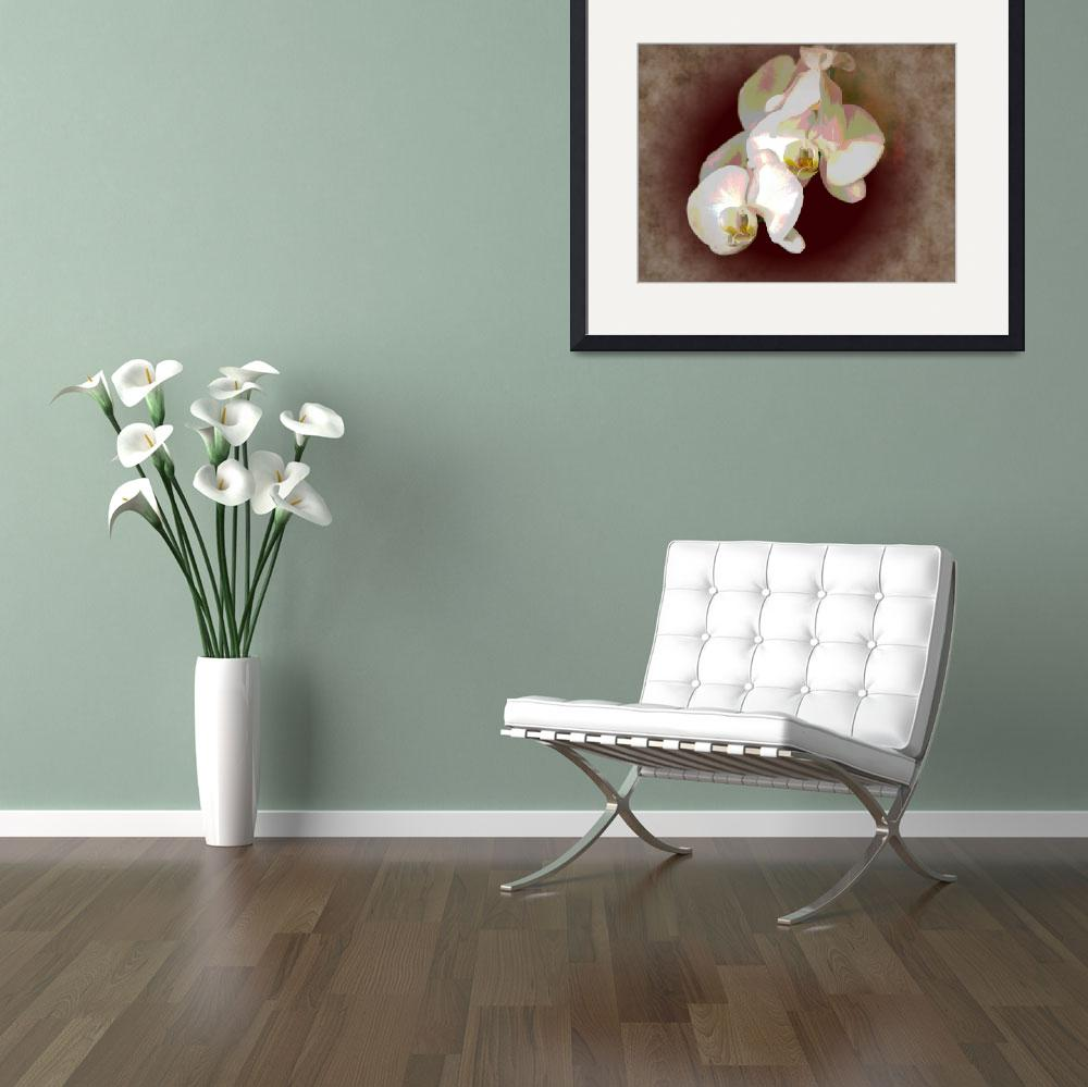 """""""White Orchid""""  (2010) by katmouse"""