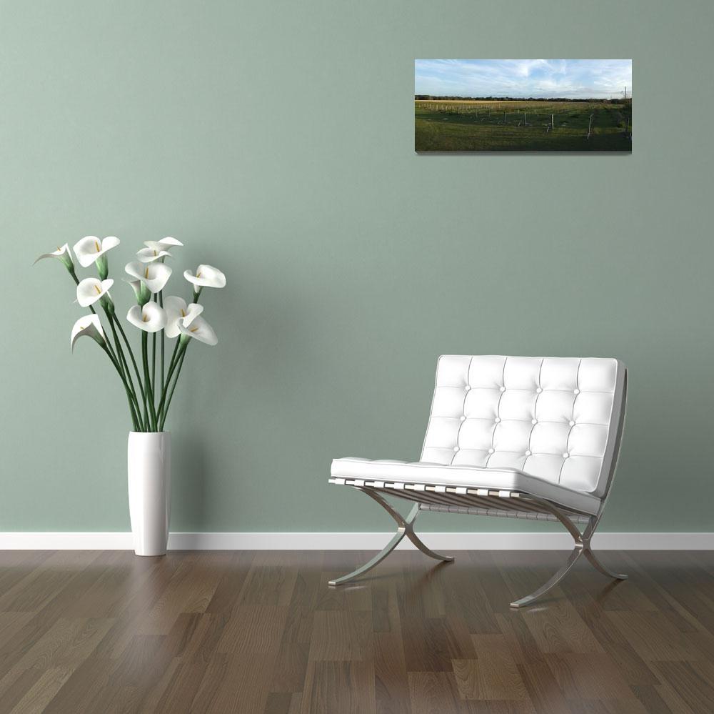 """Vineyard Panorama""  (2007) by floridagrapes"