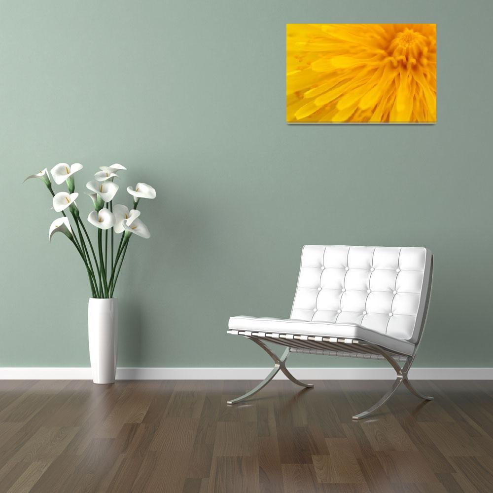 """""""Bright Yellow Dandelion Flower""""  (2008) by NatalieKinnear"""