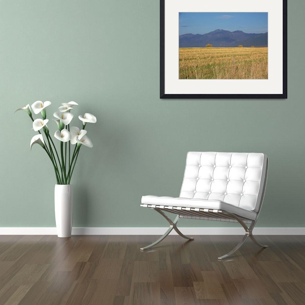 """""""Rocky Mountain Havest&quot  (2010) by look2day"""