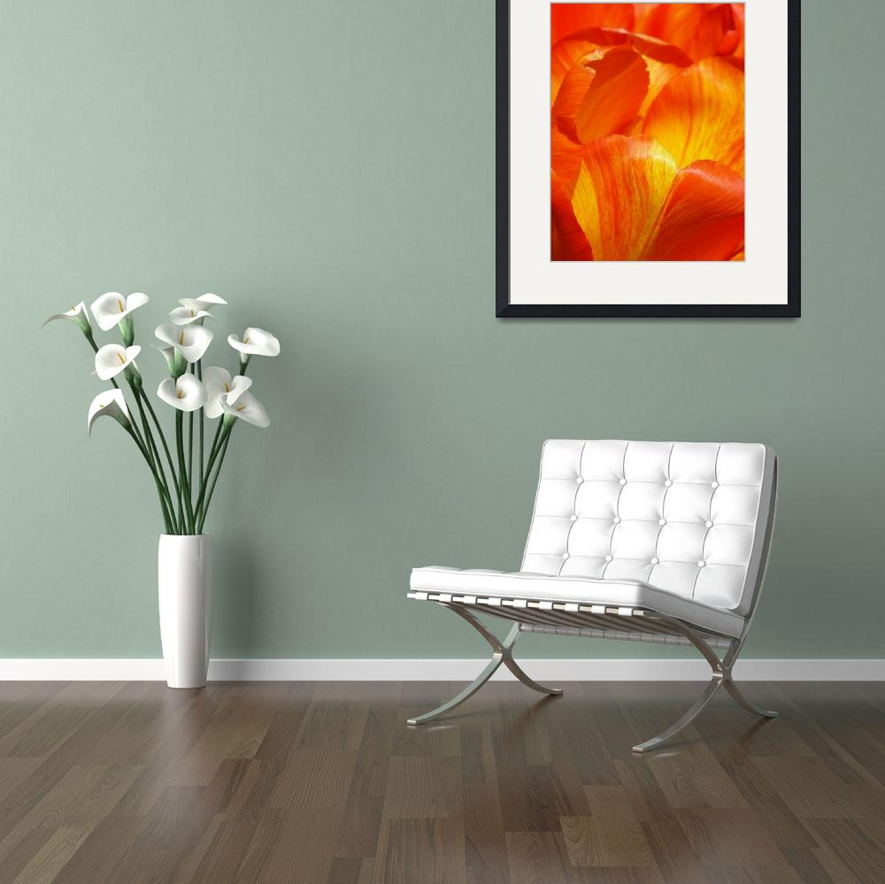 """""""Colorful Tulip&quot  (2015) by vpicks"""