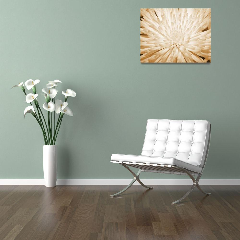 """Lone Flower""  (2010) by brandislate"