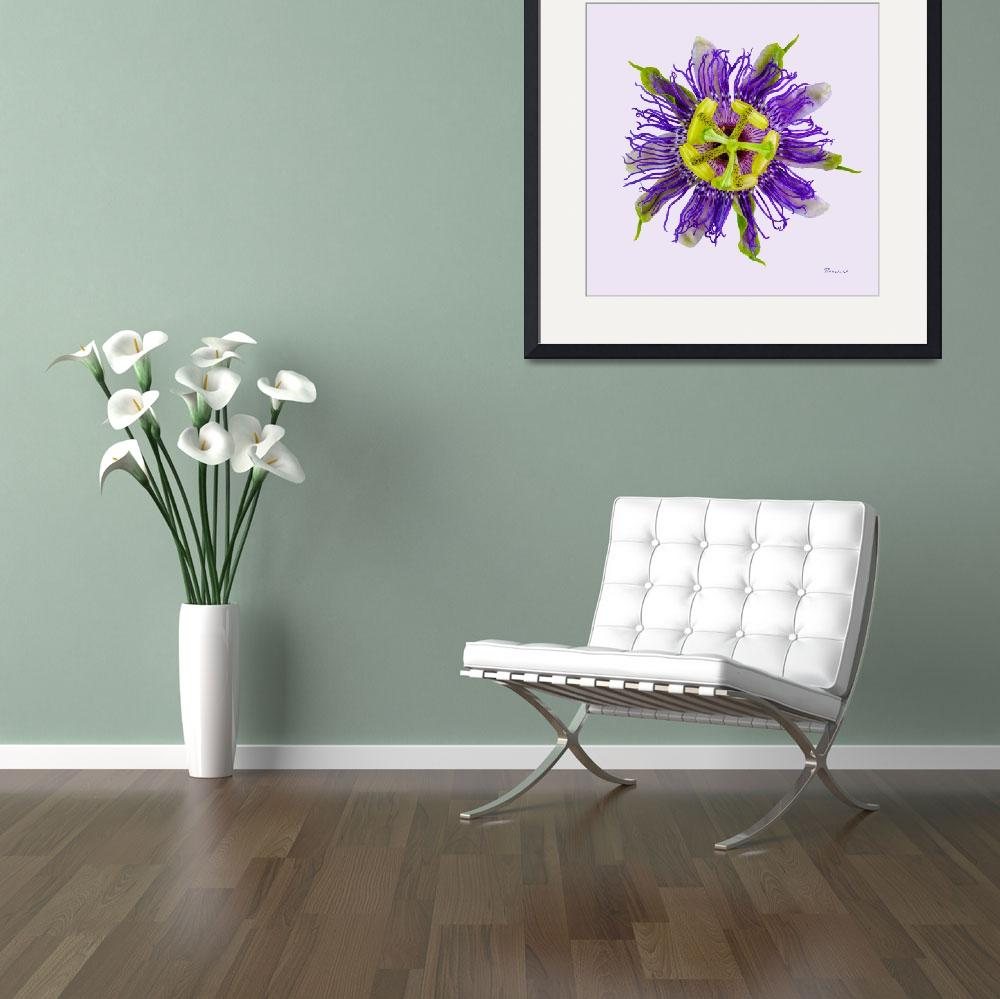 """Yellow Green And Violet Passion Flower 50674v""  (2018) by Ricardos"