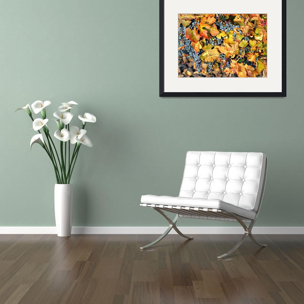 """""""Fall Grapes&quot  by Groecar"""
