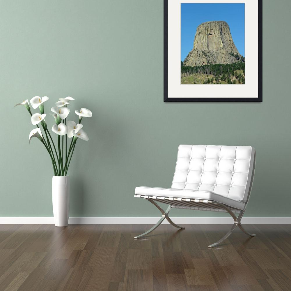 """""""Devils Tower""""  by CarolRobinsonPhotography"""