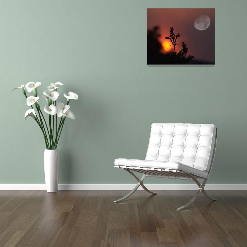"""Sunset Moonrise""  by sabreentertainment"