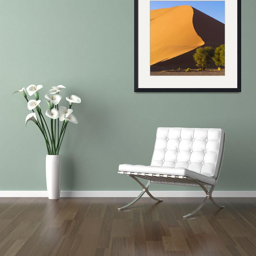 """""""Sand Dune, Namibia, Africa&quot  by DesignPics"""