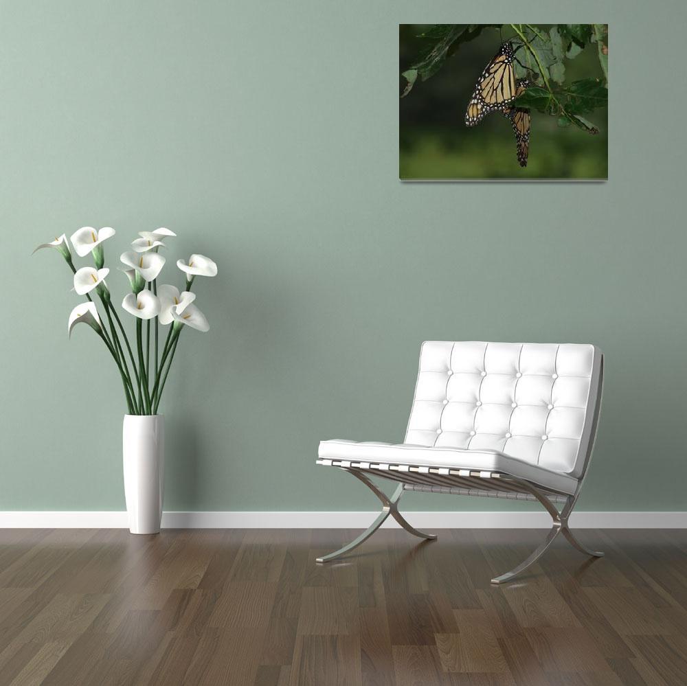 """""""Butterflies Mating""""  (2010) by Tallulah"""