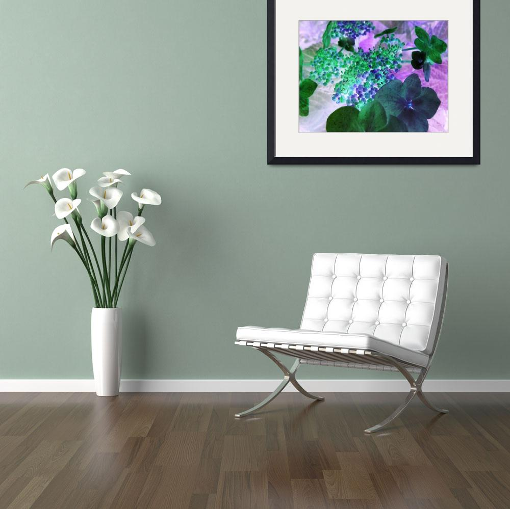 """""""inverted hydrangea&quot  (2009) by clickdecourcyNI"""