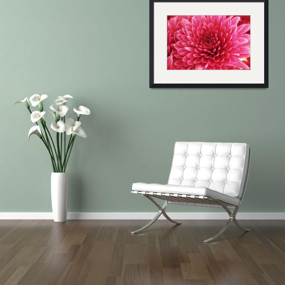 """""""Heart of a Pink Mum_2336""""  (2005) by AmbientCreations"""