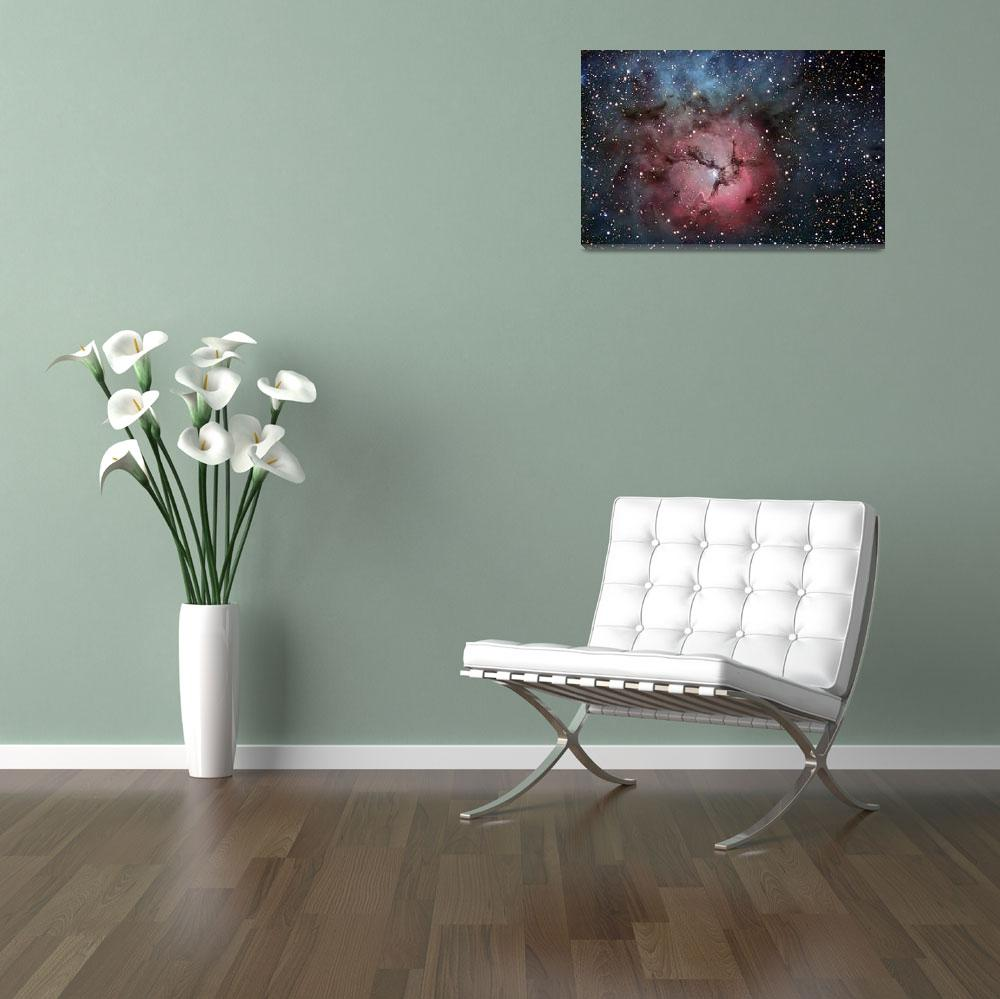 """""""The Trifid Nebula&quot  by stocktrekimages"""